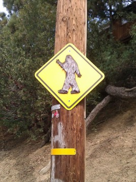 Big Foot Crossing
